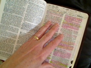 Donnas' Bible markups